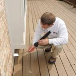 Pest Inspection Service